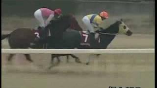 2009/9/27 福山競馬10レース 開設60周年記念アラブ特別レジェンド賞