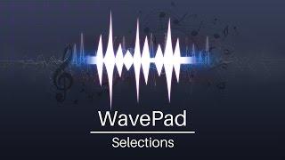 WavePad Audio Editor Tutorial - Selections