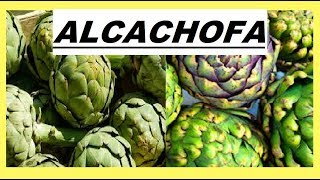 alcachofa beneficios