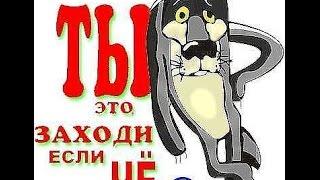 RedeX  вывод, на карту СберБанка, Яндекс, 1400$=100 000 руб, за 1-день заработал!