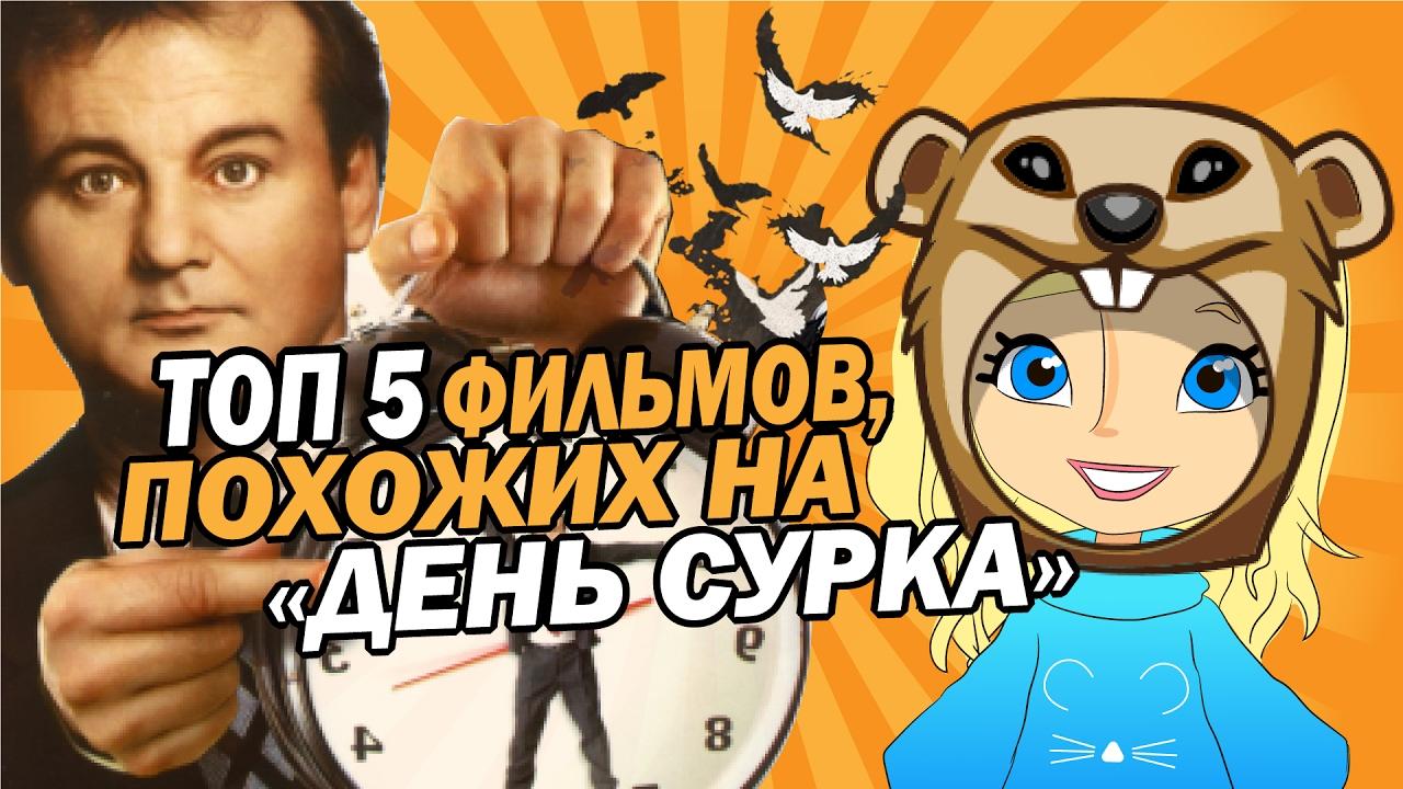 Топ 5 фильмов похожих на фильм ДЕНЬ СУРКА | Movie Mouse