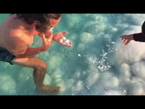Collecting Dead Sea Mana/ Ormus