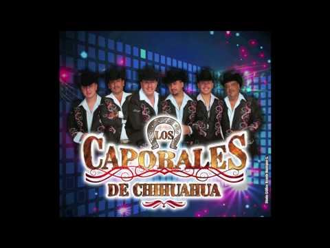 Los Caporales De Chihuahua.. En Los LLanos De Valerio Y Corrido De Eliodoro Lopez.