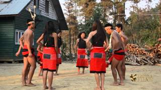 Tangkhul Naga tribe dance in Nagaland, North East India.