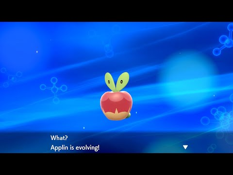 How To Evolve Applin Into Flapple Or Appletun - Pokémon Sword & Shield