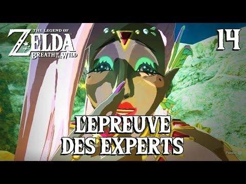 L'ÉPREUVE DES EXPERTS (Zelda Breath of the Wild - 14)
