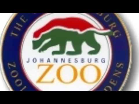 JOHANNESBURG ZOO RADIO SAMPLE