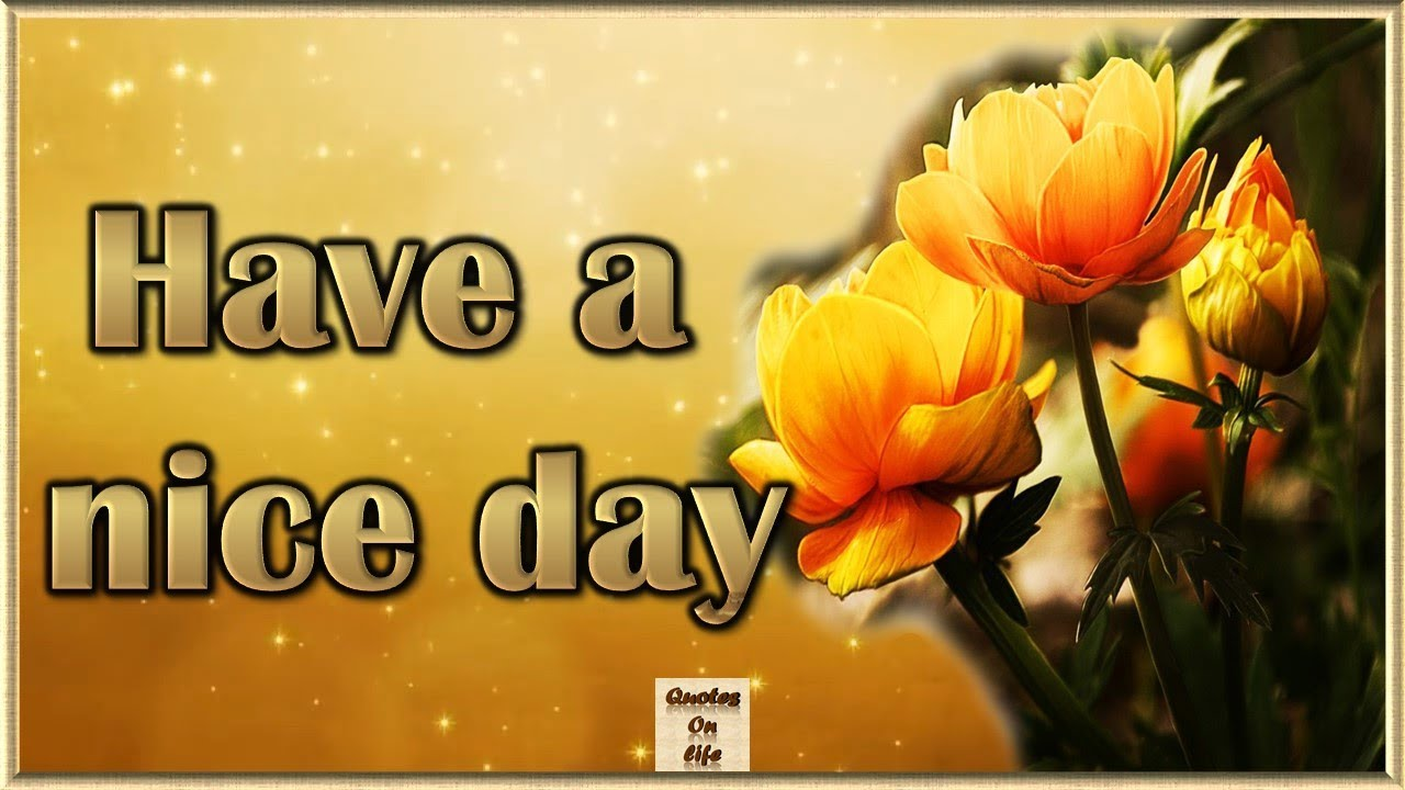 Animated good morning greetings with inspirational quotes on life animated good morning greetings with inspirational quotes on life animated good morning videos kristyandbryce Images