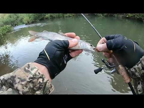 Рыбалка в тайге август 2020. Чем порадует не знакомая таёжная речушка?