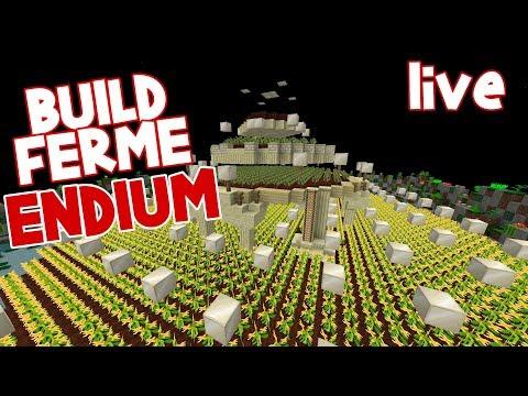 BUILD D'UNE NOUVELLE FERME D'ENDIUM EN LIVE SUR PALADIUM :3