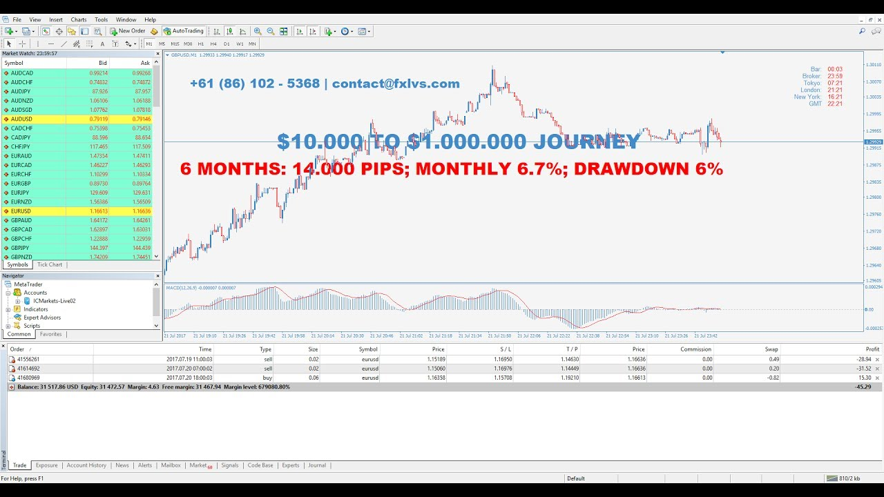 Forexlive youtube