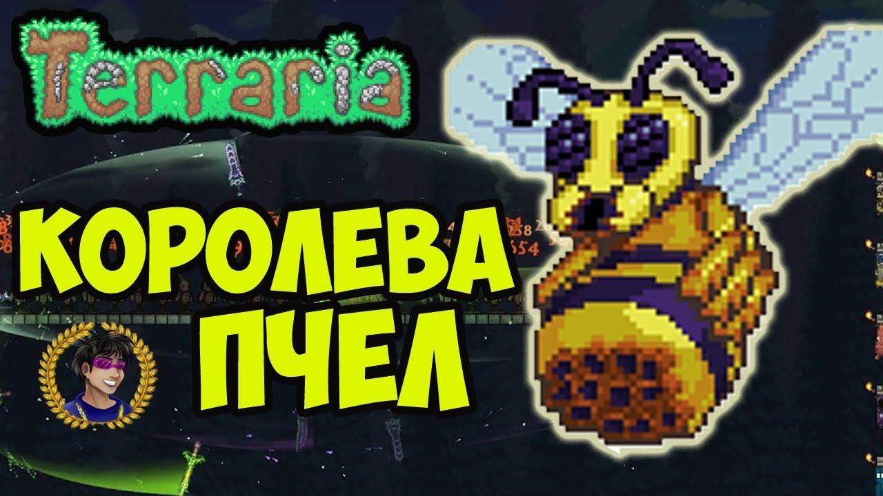 Королева пчел Террария (2020) | Террария пчела босс | Как призвать пчелу в террарии