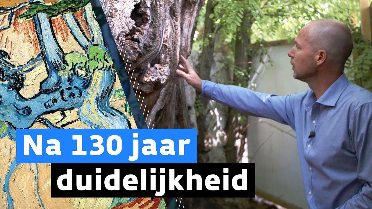Nederlander ontrafelt groot Van Gogh-mysterie