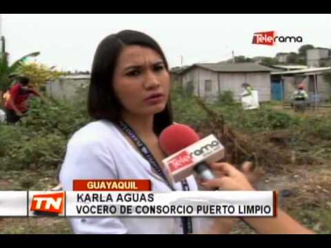 Realizan minga para impedir impactos por fenómeno del El Niño