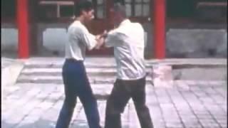 Lei Muni - Chen Taijiquan, empuje de manos (tuishou)