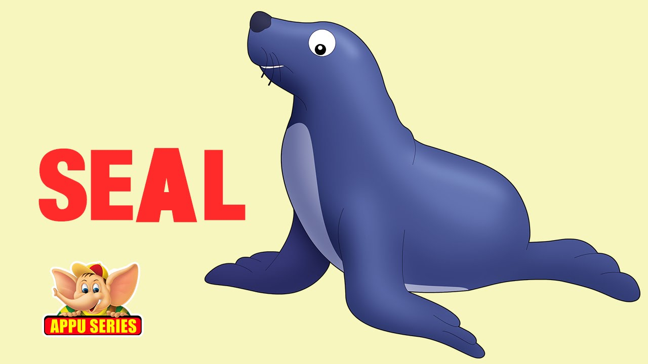 Barking elephant seal | Sounds like water burbling down a ...