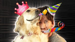 IT'S CHICA'S BIRTHDAY!!!