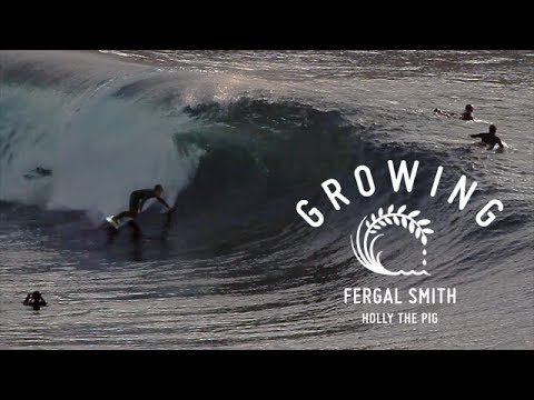 Fergal Smith - Growing - Holly The Pig | Ep 2