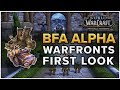 Warfronts FIRST LOOK - Battle for Azeroth Alpha