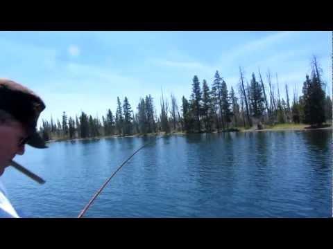 Yellowstone Lake,big red 5#Cutthroat trout