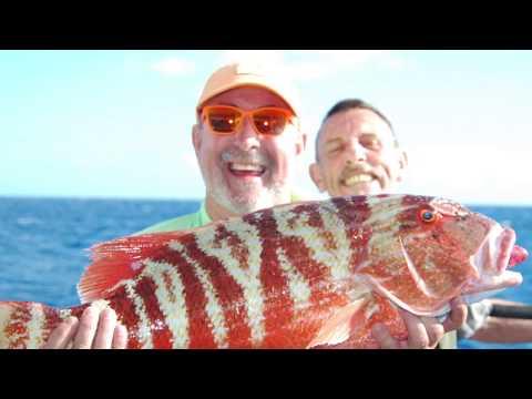 Swains Reef Trip Aug 2019