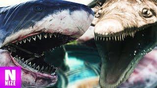 Megalodon VS Predator X
