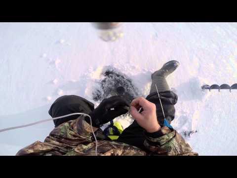 зимния рыбалка окуня на урале