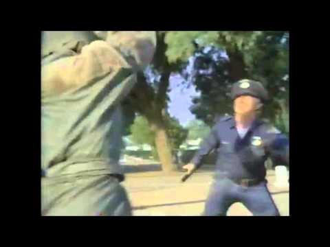Ninja 3Lucinda Dickey Tribute
