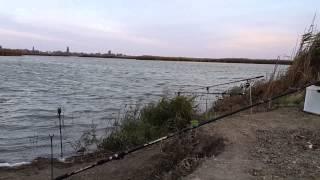 Рыбалка в Ермаково. Карп, карась