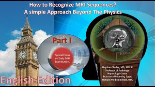 How to Recognize MRI Sequences?A simple Approach Beyond The Physics