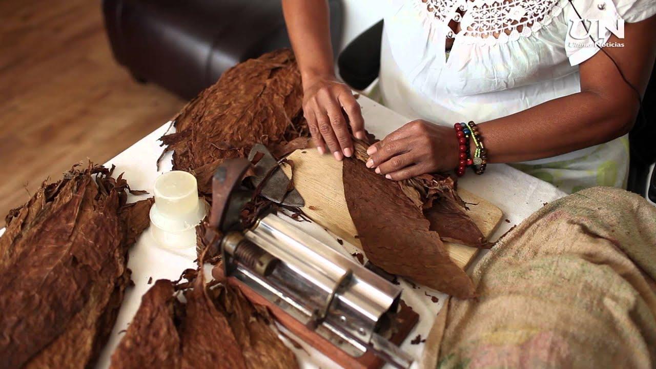 Papayapedia c mo se hace un tabaco a la manera cubana for Como se elabora un vivero