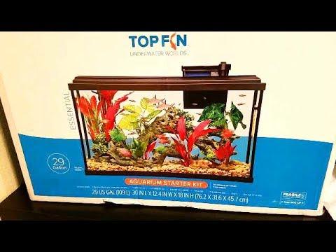 BETTA fish Aquarium UPGRADED finally!!