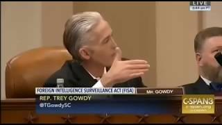 Trey Gowdy Puts Little Adam Schiff in His Place During Hearing