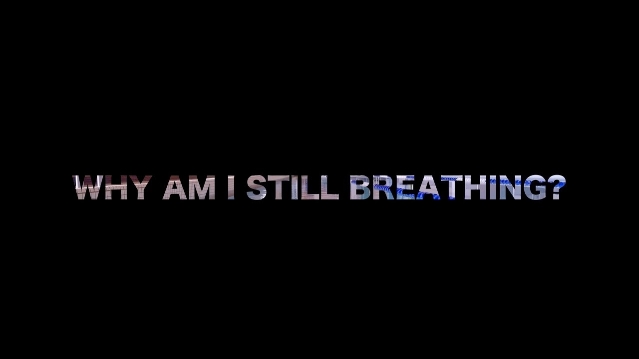 MelG-Art (Why Am I Still Breathing?)