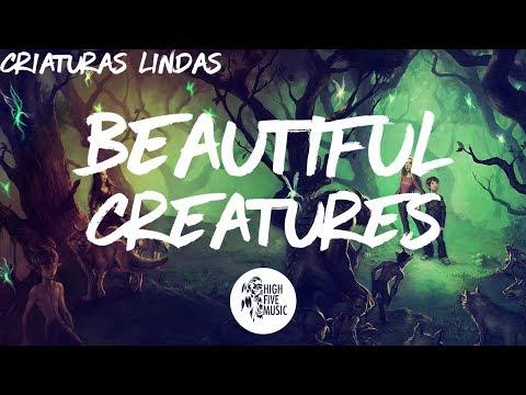 Illenium - Beautiful Creatures (feat. MAX) [Tradução]
