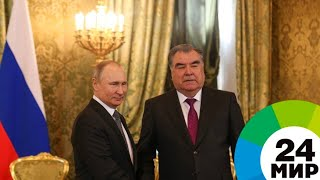 «Достойные условия»: Путин и Рахмон обсудили трудовую миграцию - МИР 24