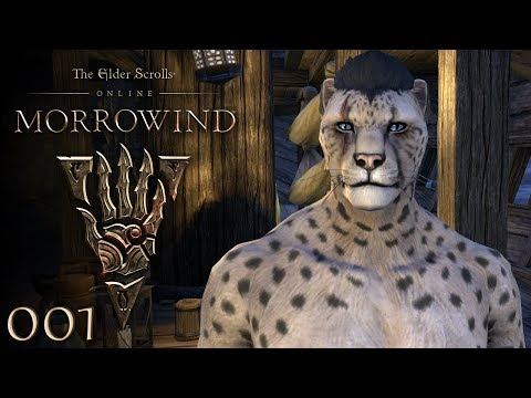 Willkommen in Morrowind ★ THE ELDER SCROLLS ONLINE: MORROWIN
