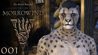 Willkommen in Morrowind ★ THE ELDER SCROLLS ONLINE: MORROWIND ★ #001 [Gameplay German | Deutsch]