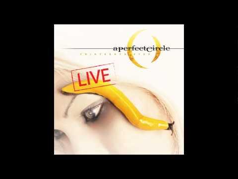 A Perfect Circle: Thirteenth Step (Live) - Pet