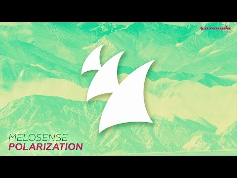 Melosense - Polarization