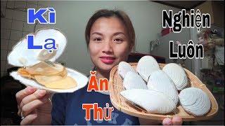 🇯🇵Ngao Vỏ Đĩa Ngòi Cam Ngàn Vân Sóng - Hấp Xả Ăn Thử Nghiện Luôn - Cuộc Sống Ở Nhật#173