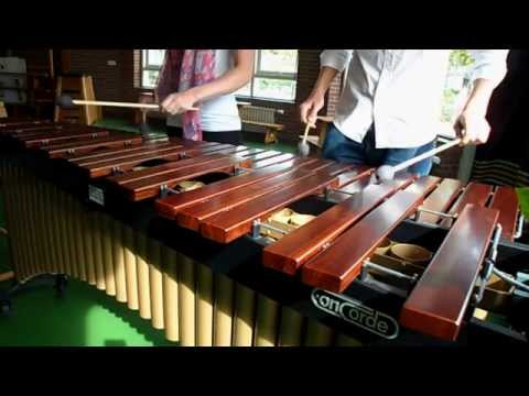 The Pink Panther Theme song on marimba (cover)