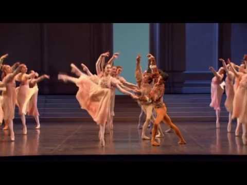 Tchaikovsky   Swan Lake Paris Opera Ballet, 2005
