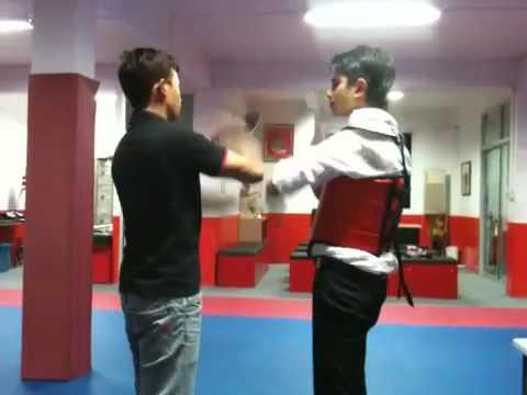 Wing Chun Luk Sau