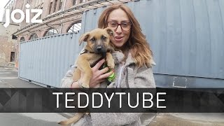 Welpe Teddy erkundet die Welt - VLOG - TeddyTube #5