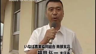 おやべランド☆『津沢中でハトムギ栽培』2008年6月20日(金)