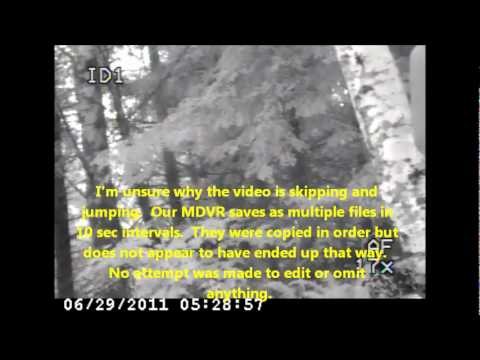 Olympic Natl Forest Expedition 22-29 June 2011 (Part 3 of 3)