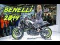 BENELLI 2019 NEW?? - ESPAÑOL-??? / 752S/502C/ LEONCINO 250/ TRK250/ IMPERIALE 400/ LEONCINO 800