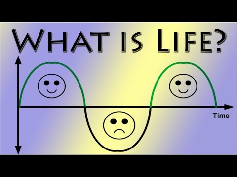 "What Is Life? - ""road of happiness or sorrow?"""