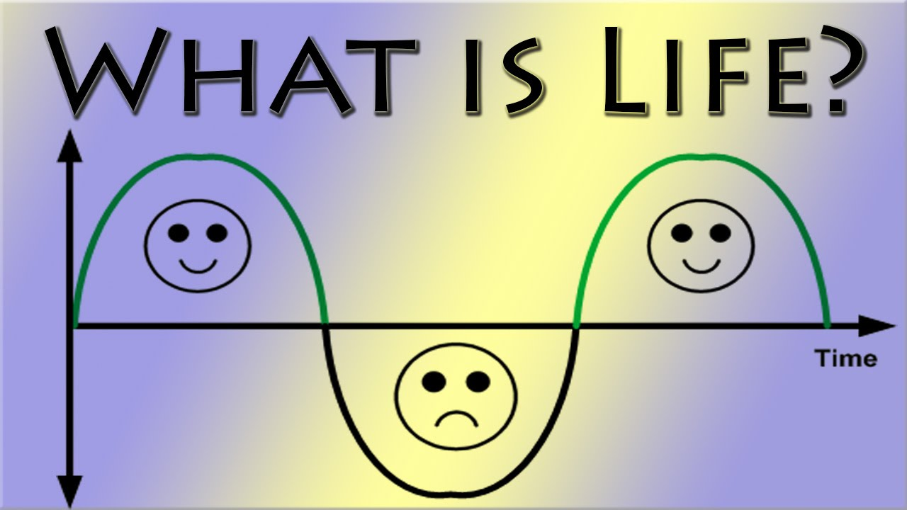 what is life ile ilgili görsel sonucu